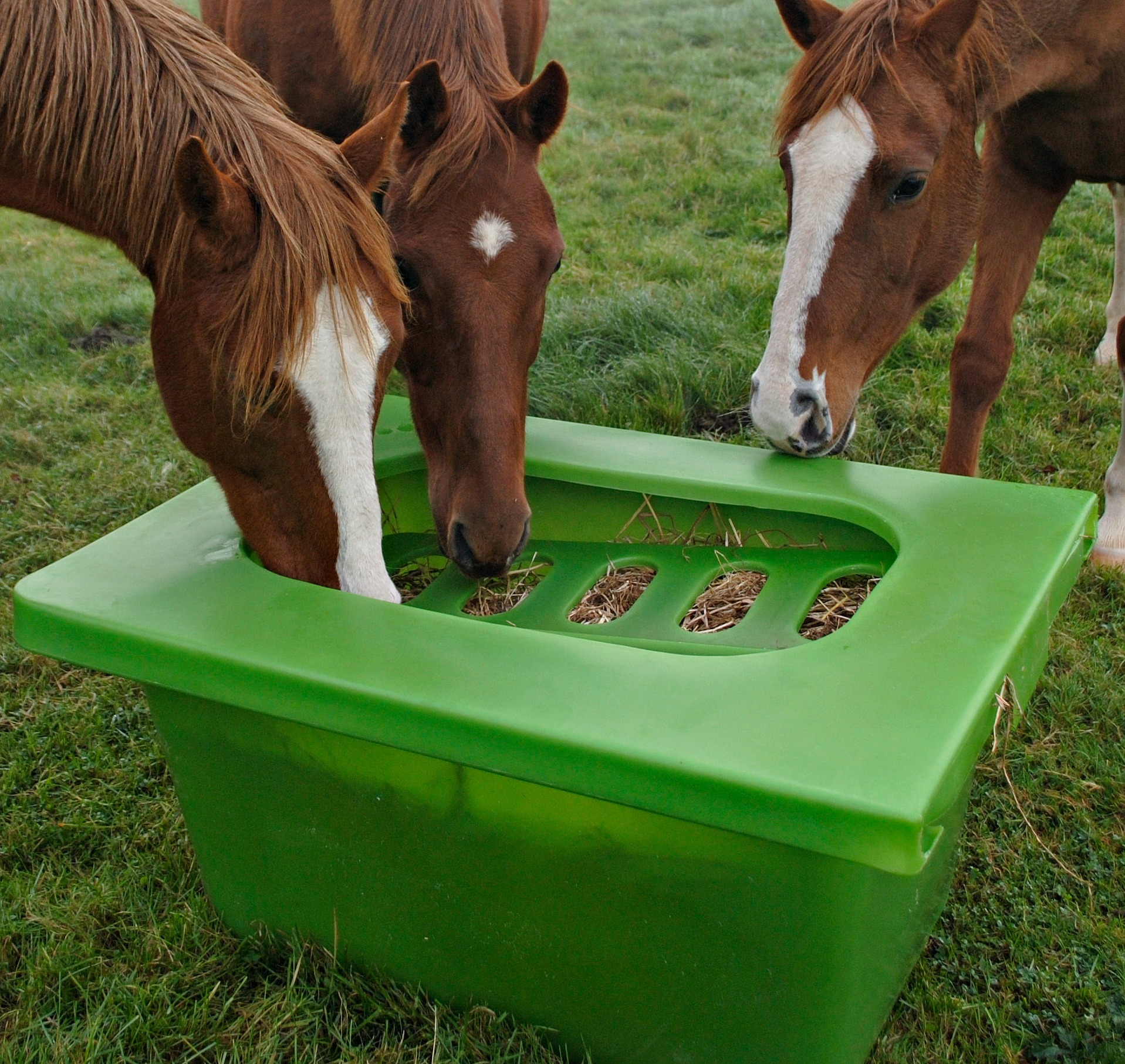 feeders horses nsow hay zoom grazer listing feeder slow for il fullxfull wood